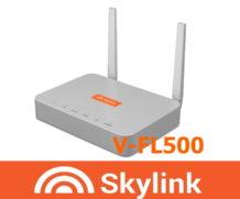 Обзор и настройка роутера SkyLink V-FL500